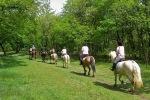 rutas-a-caballo2